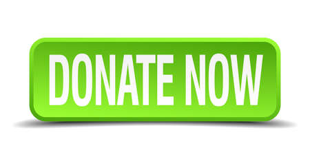 donate now green 3d realistic square isolated button