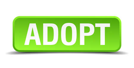 adoptive: Adopt green 3d realistic square isolated button Illustration