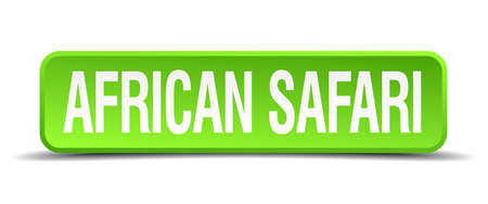 junket: african safari green 3d realistic square isolated button Illustration