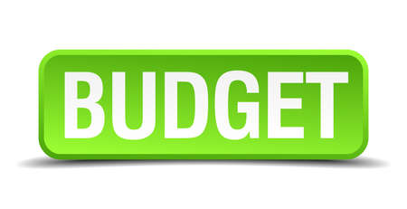 Budget green 3d realistic square isolated button Illustration