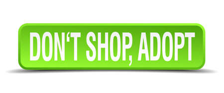 adoptive: dont shop adopt green 3d realistic square isolated button