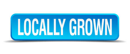 grown: locally grown blue 3d realistic square isolated button