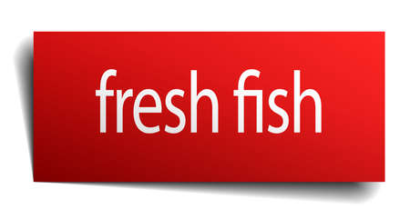 fresh fish: fresh fish red paper sign on white background