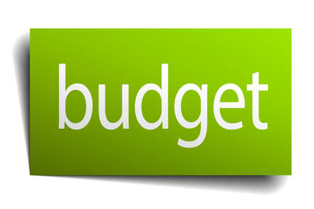 on white background: budget green paper sign on white background
