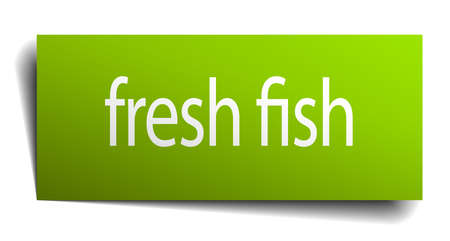 fresh fish: fresh fish green paper sign isolated on white