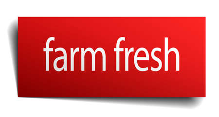 farm fresh: farm fresh red paper sign on white background