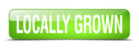 locally: locally grown green square 3d realistic isolated web button