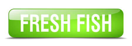 fresh fish: fresh fish green square 3d realistic isolated web button