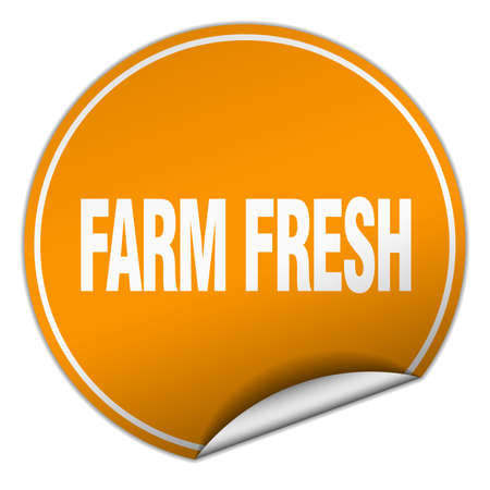 farm fresh: farm fresh round orange sticker isolated on white