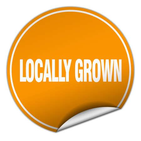 locally: locally grown round orange sticker isolated on white