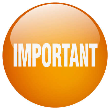 important: important orange round gel isolated push button Illustration