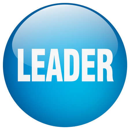 leader blue round gel isolated push button Illustration