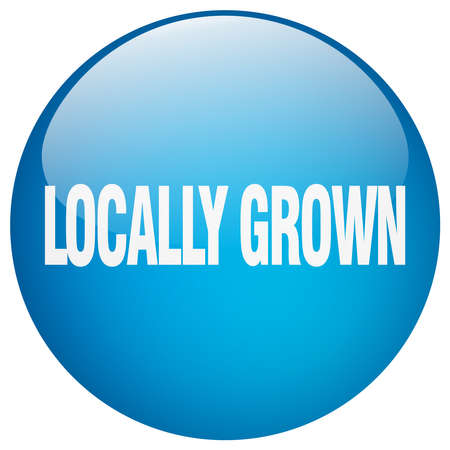 grown: locally grown blue round gel isolated push button