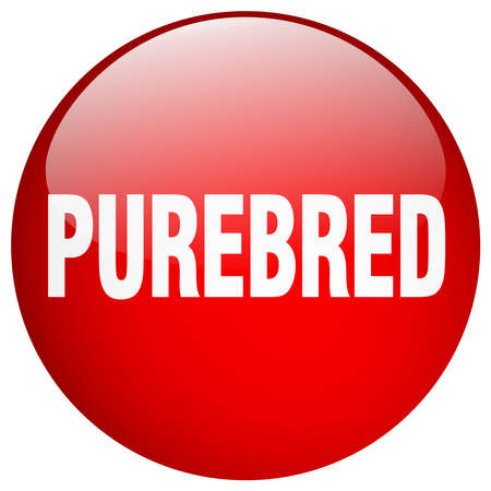 purebred: purebred red round gel isolated push button Illustration