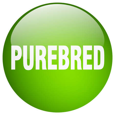 purebred: purebred green round gel isolated push button