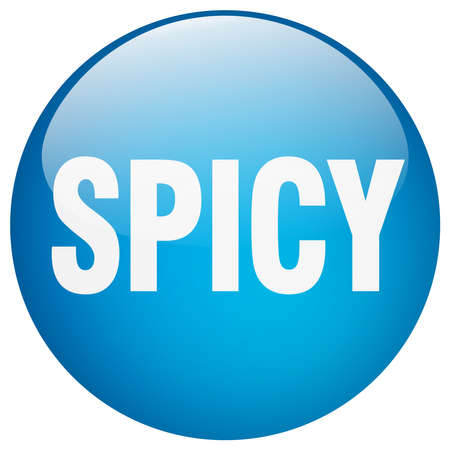 spicy: spicy blue round gel isolated push button