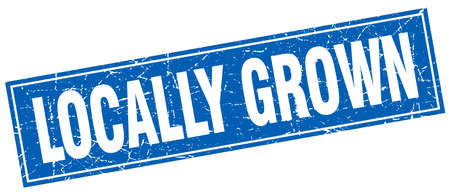 grown: locally grown blue square grunge stamp on white