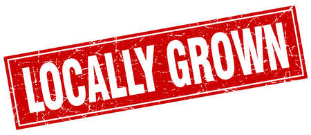 grown: locally grown red square grunge stamp on white