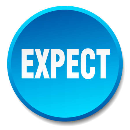 expect: expect blue round flat isolated push button