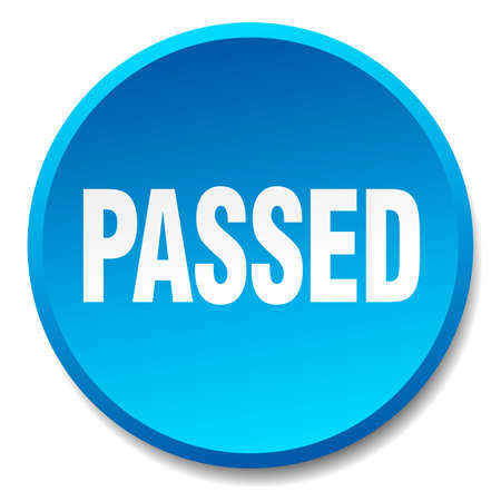 passed: passed blue round flat isolated push button