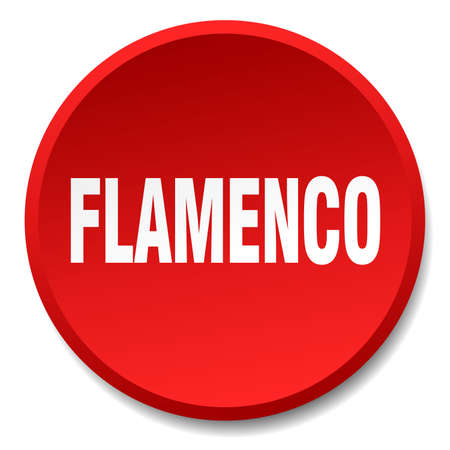 flamenco: flamenco red round flat isolated push button