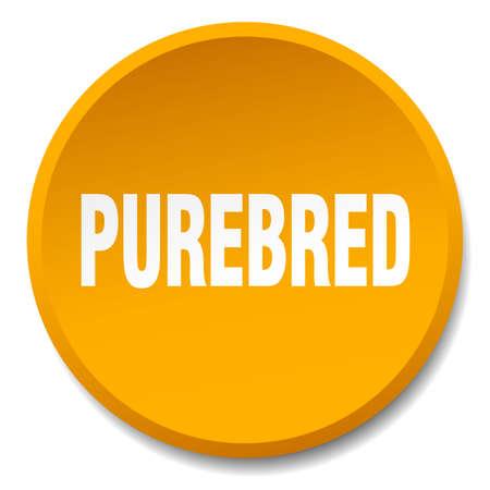 purebred: purebred orange round flat isolated push button