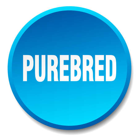 purebred: purebred blue round flat isolated push button