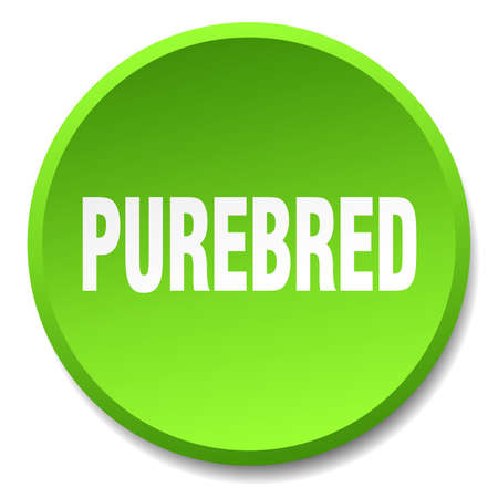 purebred: purebred green round flat isolated push button