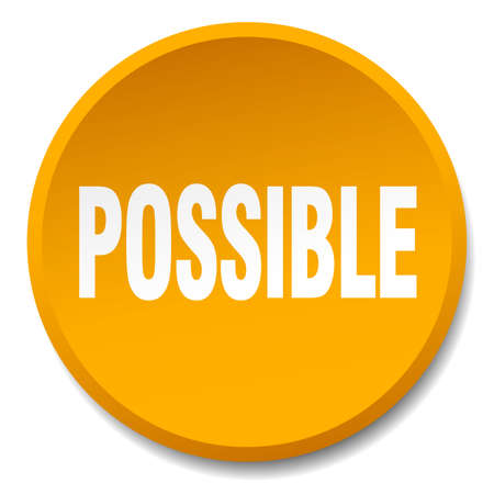 possible: possible orange round flat isolated push button