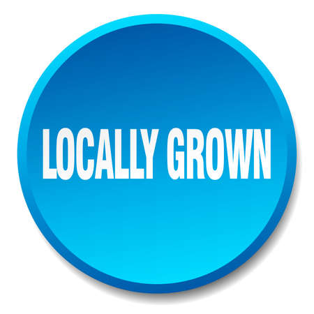 locally: locally grown blue round flat isolated push button