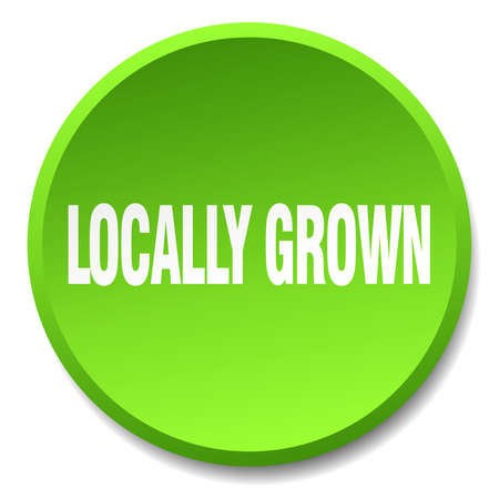 locally: locally grown green round flat isolated push button