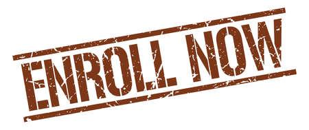 enroll: enroll now brown grunge square vintage rubber stamp Illustration