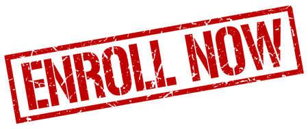 enroll: enroll now red grunge square vintage rubber stamp Illustration