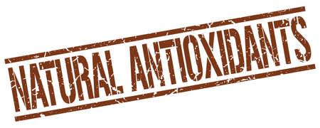 antioxidants: natural antioxidants brown grunge square vintage rubber stamp