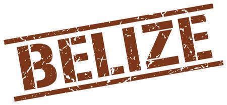 belize: Belize brown square stamp