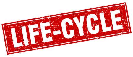 ciclo de vida: Ciclo de Vida sello cuadrado