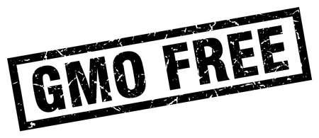 genetically modified organisms: square grunge black gmo free stamp