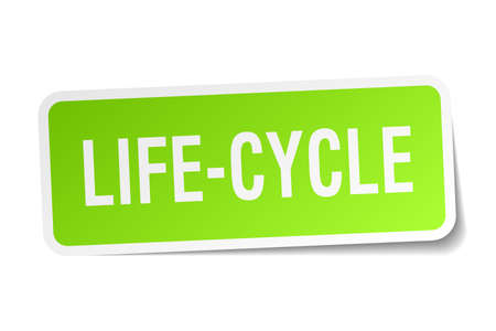 life-cycle square sticker on white