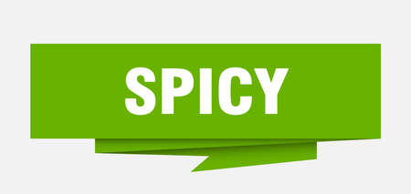 spicy sign. spicy paper origami speech bubble. spicy tag. spicy banner