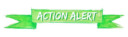 action alert hand painted ribbon sign