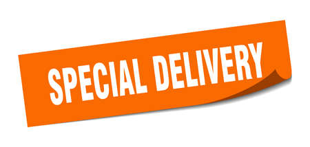 special delivery sticker. special delivery square isolated sign. special delivery