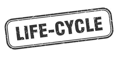life-cycle stamp. life-cycle square grunge black sign