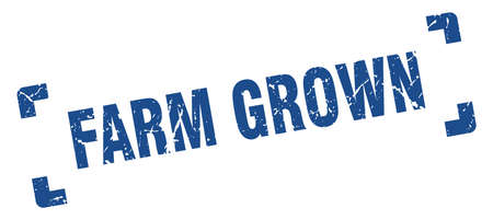 farm grown stamp. square grunge sign on white background