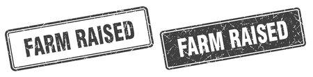 farm raised square stamp. farm raised grunge sign set