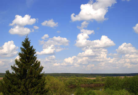 Beautiful spring landscape of blue sky and the forest in the Moscow region photo
