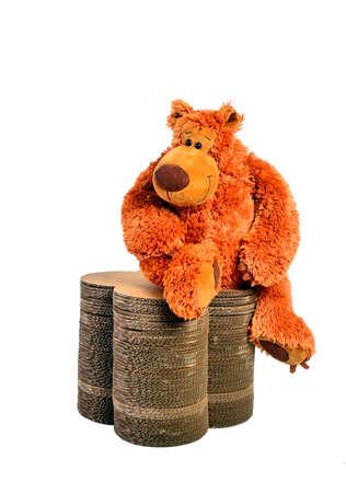 teddybeer in kartonnen doos op een witte achtergrond Stockfoto