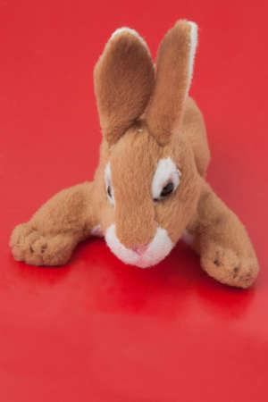 Soft toy rabbit on a red background closeup
