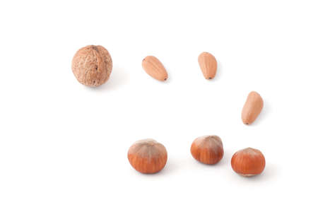 Walnuts, hazelnuts, pine nuts on a white background