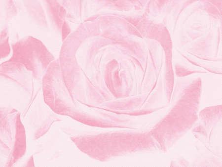 Zusammenfassung Hintergrund mit rosa Rosen, ein wichtiger Plan
