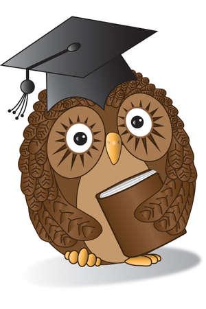 Success of a little Owl